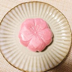 春/餡子/桜/和菓子/フォロー大歓迎/スイーツ/... 桜もなかを食べました🌸  餡子がほんのり…