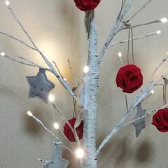 noriちゃん/オーナメント/Handmade/白樺ツリー/ワイヤー文字/クリスマス noriちゃんのオーナメント 届きました…(4枚目)