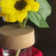 米粉のパン/紫陽花ドライ/お花/私のお気に入り/わたしのお気に入り こんばんは❤️ またお花を買いに焦りなが…(2枚目)