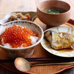 朝ごはん/いくら丼/おうちカフェ/ワンプレートごはん/ワンプレート/おうちごはん/... Today's breakfast 20…(1枚目)