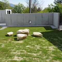 バーべキュウ/椅子 /テーブル/庭/芝生/注文住宅/... 工事に出てきた大きな岩を利用してテーブル…