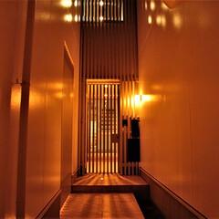 注文住宅/デザイナーズ住宅/モダン住宅/一級建築士事務所/アプローチ/格子/... ビルトインガレージは3台に、合わせて玄関…(1枚目)