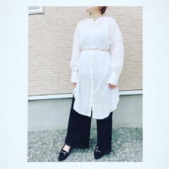 白シャツ/ロングシャツ/ウエストマーク/プチプラコーデ/しまむら/神戸レタス/... 神戸レタス田中亜希子さんコラボのシャツが…