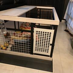 犬小屋/DIY/ハンドメイド
