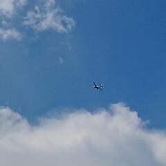 窓から見える景色/飛行機/青空/部屋からの景色 Have a nice flight!
