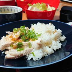 つや姫/ごはんメモ/時短レシピ 今夜のごはん📝 カオマンガイ 卵とトマト…