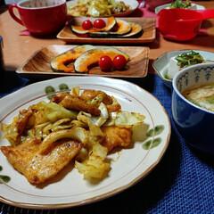 つや姫/ごはんメモ 今夜のごはん📝 鶏むね肉とキャベツのカレ…