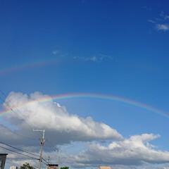 青空/ダブルレインボー/虹/空 ダブルレインボー🌈 初めて見た❗  鳥さ…