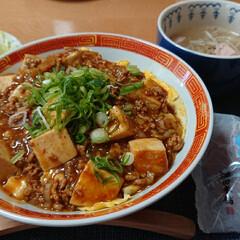 おうちごはん/ごはんメモ 大好きな天津麻婆豆腐丼 東海飯店が恋しい…