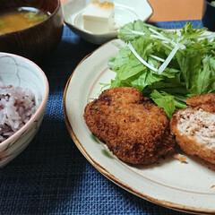 枝豆レシピ/つや姫/メンチカツ/ごはんメモ 今夜のごはん📝 枝豆メンチカツ 水菜サラ…