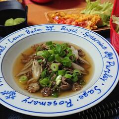 お気に入りのお皿/食べるスープ/スープ/つや姫/ごはんメモ 今夜のごはん📝 牛肉とごぼうの食べるスー…