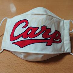カープ/マスク 我が家のカープ坊や、いやいやおじちゃんに…