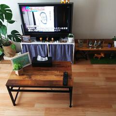 暮らし/DIY/ニトリ/100均 前は畳にラグを敷いてましたが、夏に向けて…(1枚目)