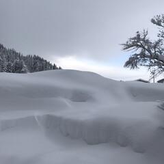 豪雪地帯/雪国/雪/玄関前