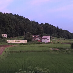 電車/田舎/空/風景 (1枚目)