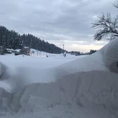玄関前/田舎/雪景色 今日も1mくらい積もりそう。゚゚(*´□…(2枚目)