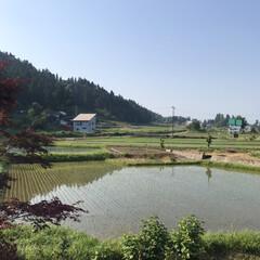 田舎/空/風景 (1枚目)