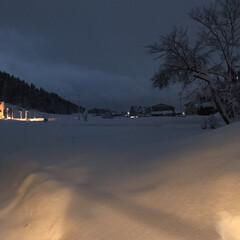 我が家からの風景/部屋から見える景色/雪