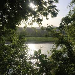 静かな時間/のんびり/田舎暮らし/癒される光景 我が家からも見える風景✨(1枚目)