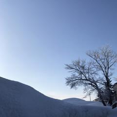 雪景色/空/田舎/晴天/雪国 おはようございます☀️ 久しぶりに朝から…