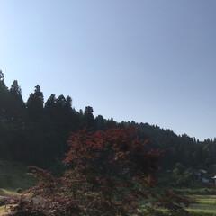 田舎/空/風景 (2枚目)
