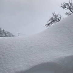 風景/雪国/氷柱