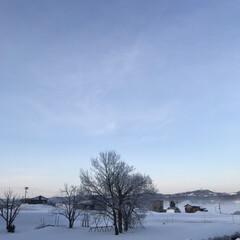 霧/癒される光景/空気が美味しい/空/雪景色 (1枚目)