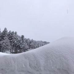 雪国/雪景色