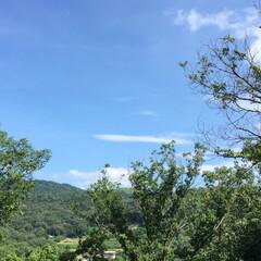 自然/景色 わが家のリビングのベランダからの景色😊 …