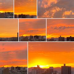 空/夕日 連休が静かに終わりそうです😊💕 台風が直…(1枚目)