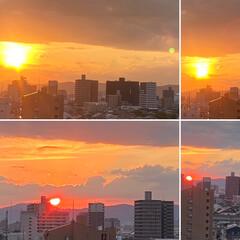 空/夕日 今日の夕陽は鮮やかでした😃💕(1枚目)
