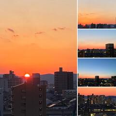 暮らし 明日天気にな〜れ🌸(1枚目)