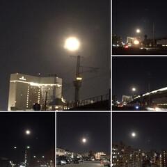 リミアの冬暮らし/暮らし 今年最後の満月の夜🌕 綺麗に眺められてま…