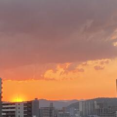 暮らし 関東では夕立のようでしたが、こちらは綺麗…(2枚目)