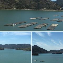 風景 牡蠣筏💕
