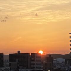 暮らし 太陽の沈む位置が西北西になってきました💕