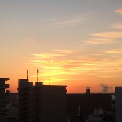 風景 今朝も穏やかな日差しが見られてます💕(1枚目)