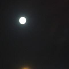 暮らし おはようございます💕 朝寝坊の月がまだま…(3枚目)