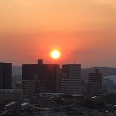 夏のお気に入り 今日の夕陽は大きくゆっくりと沈んでいきま…