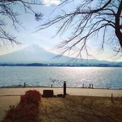 風景 河口湖