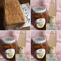 おすすめアイテム/夏のお気に入り 山田養蜂場の「輪切りレモン」喉に優しく必…