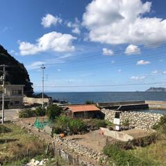 ペンション復活プロジェクト/秋/おでかけ/建築 愛媛県松山市から南へ2時間  ご紹介いた…