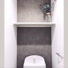 コンクリート風/コンクリート壁紙/張り替え/壁紙シート/リメイクシート/壁紙DIY/...