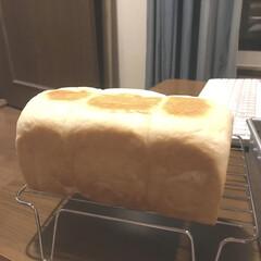 自家製パン ようやく完成、自家製パン 味の決めてはや…