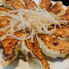 おそとごはん/浜松餃子/令和の一枚/フォロー大歓迎/おでかけ/おでかけワンショット 旅先で食べた初の浜松餃子✨ 美味しかった…