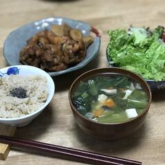 簡単レシピ/夕ご飯/黒酢煮/手羽元/ごぼう/レタス いつの日かの夕ご飯!メインは、手羽元の黒…