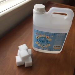 アール・ステージ アルカリ電解水クリーナー 水ピカ スプレーボトル 300ml 700031 1本(台所用洗剤)を使ったクチコミ「掃除の強い味方!水ピカとメラミンスポンジ…」