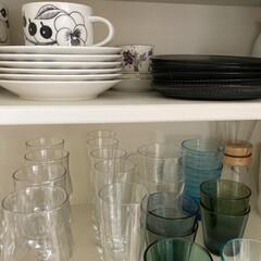 イッタラ カステヘルミ プレート 17cm グレイ   イッタラ(皿)を使ったクチコミ「グラスやティーカップを収納している食器棚…」(1枚目)