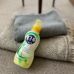 花王 エマール リフレッシュグリーン 本体 500ml | 花王(液体洗剤)を使ったクチコミ「冬物のストールやブランケットを、洗ってよ…」