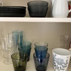 イッタラ カルティオ レイン 951201 タンブラー 210ml 2個入り | イッタラ(コップ、グラス)を使ったクチコミ「食器棚の様子。右側にはイッタラ、カルティ…」(1枚目)